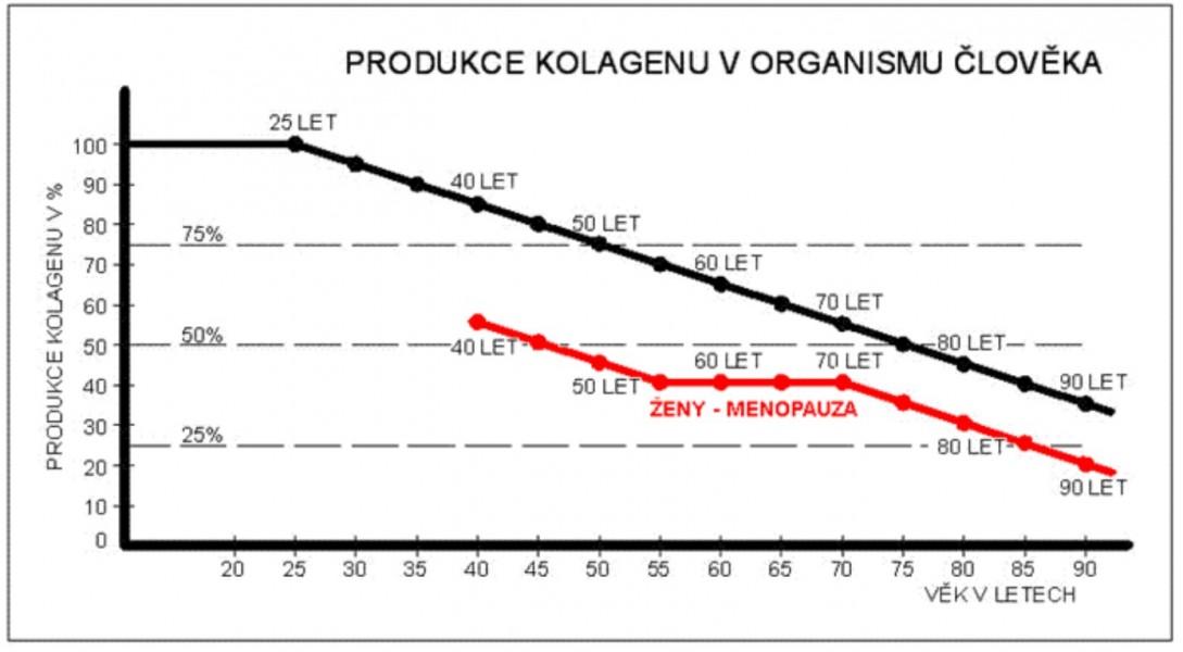Graf o úbytku kolagenu