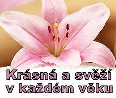 http://omlazeni-pleti.webnode.cz/